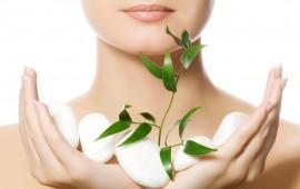 Mẹo chăm sóc cơ thể với nguyên liệu tự nhiên